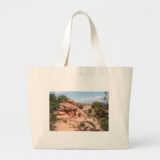 Canyonlands National Park, Utah, USA 1 Bags