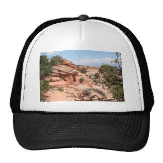 Canyonlands National Park, Utah, USA 1 Trucker Hat
