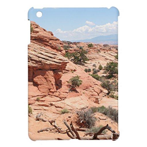 Canyonlands National Park, Utah, USA 1 Case For The iPad Mini