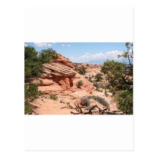 Canyonlands National Park, Utah, USA 1 Postcard