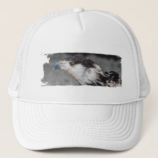 Cap BIRD OF PREY photo: Jean Louis Glineur