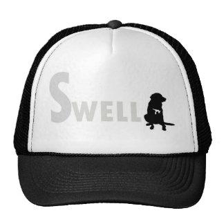 Cap truck swell 7 hats