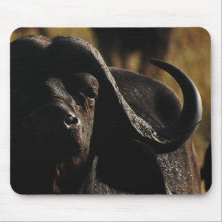 Cape Buffalo exclusive designer mousemats