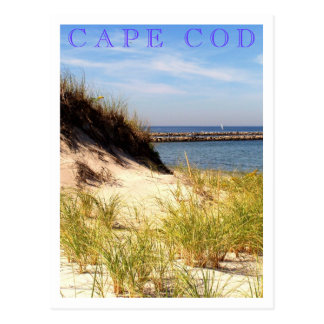 Cape Cod Dune Postcard