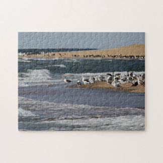 Cape Cod Seascape with shore birds Jigsaw Puzzle