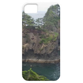 Cape Flattery iPhone 5 Cases