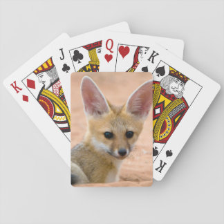 Cape Fox (Vulpes Chama) Pup Peers Inquisitively Playing Cards
