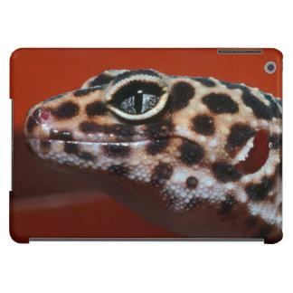 Cape Gecko (Pachydactylus Capensis) Profile Case For iPad Air