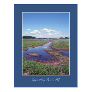 Cape May Point Postcard