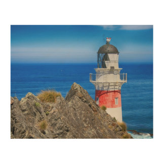 Cape Palliser New Zealand Lighthouse Wood Canvas