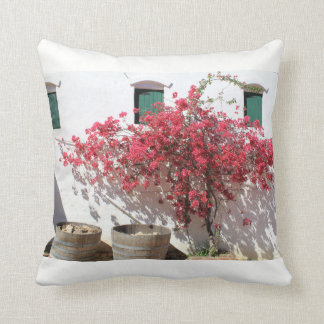 Cape Tow Countryside Scenery Pillow