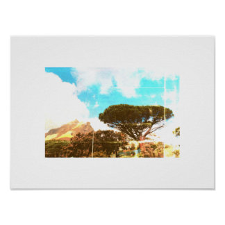 Cape Town Table Mountain Pine Tree View Poster