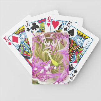 Caper Flower Blossom Bicycle Playing Cards
