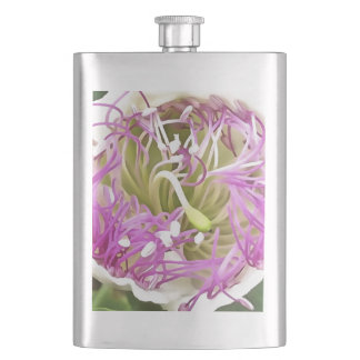 Caper Flower Blossom Hip Flask