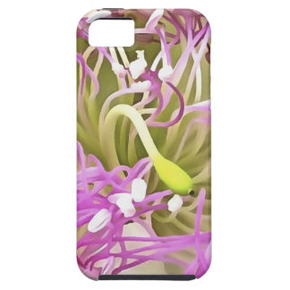 Caper Flower Blossom iPhone 5 Case