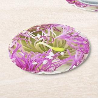 Caper Flower Blossom Round Paper Coaster