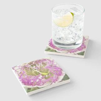 Caper Flower Blossom Stone Coaster