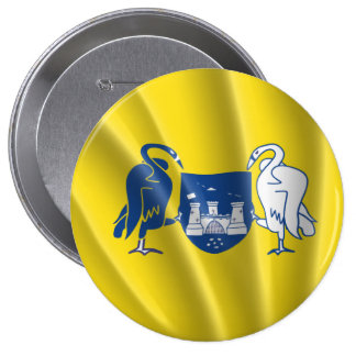 CAPITAL TERRITORY PINBACK BUTTONS