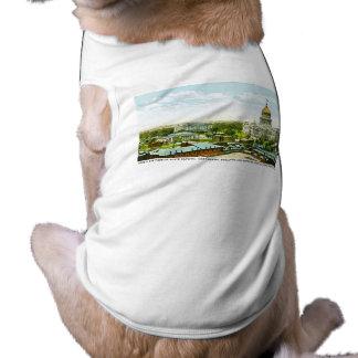 Capitol Centennial Building, Springfield, Illinois Sleeveless Dog Shirt