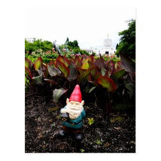 Capitol Garden Gnome Postcard