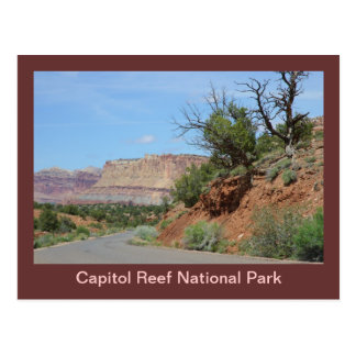 Capitol Reef National Park Postcard