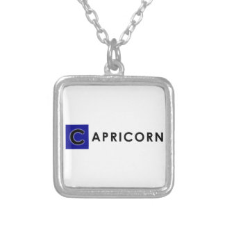 CAPRICORN COLOR SILVER PLATED NECKLACE
