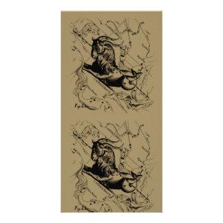 Capricorn Constellation Hevelius 1690 on Taupe Customized Photo Card