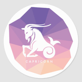 Capricorn zodiac sign modern stickers
