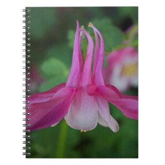 Captivating Columbine Notebooks