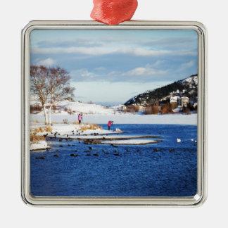 Capture The Season Silver-Colored Square Decoration