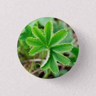 Capturing Clover in Kyrgyzstan: Cool Nature Photo 3 Cm Round Badge