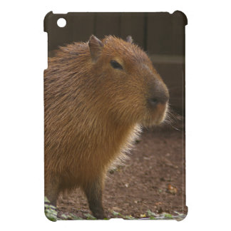 Capybara iPad Mini Covers