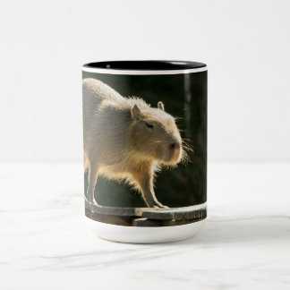 Capybara Large Mug