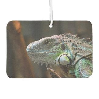 Car Air Fresheners with beautiful Iguana lizard