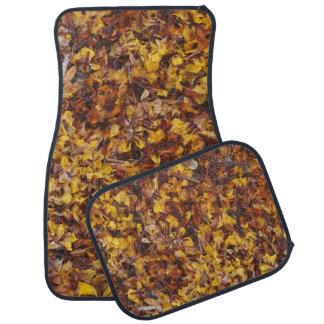 Car mat set with leaf litter background