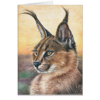 Caracal Sunset Card