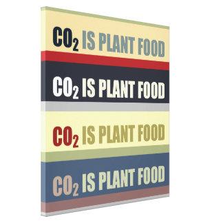 Carbon Dioxide Is Plant Food Canvas Prints