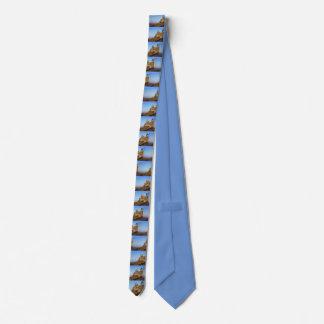 Carcassonne, France Tie