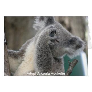 Card Adopt A Koala Australia Paw