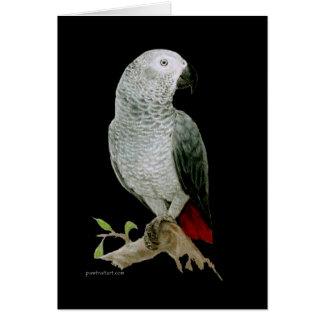 Card - African Grey Parrot