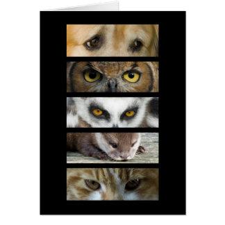 Card - Animals Eyes