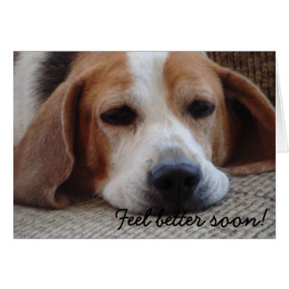 Card Beagle Feel Better Soon