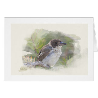 Card Butcher bird Blank inside