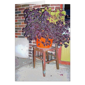 Card: Flowerpot & Chair in Linden Hills-Mpls., MN Card