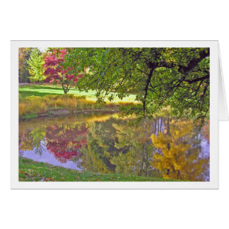 """Card """"Reflections in a Pond"""""""