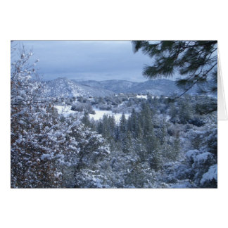 Card -sierra valley after snow fall