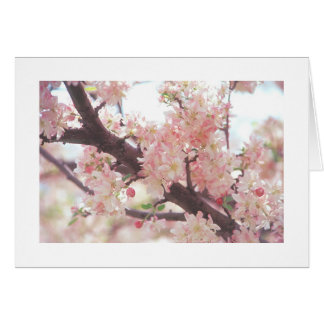 card with photo of blossoming tree branch