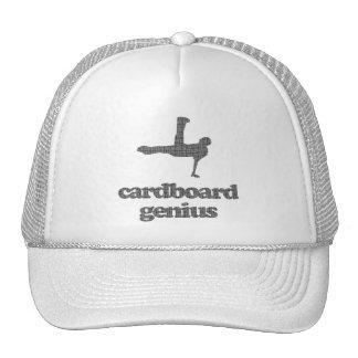 Cardboard Genius Cap
