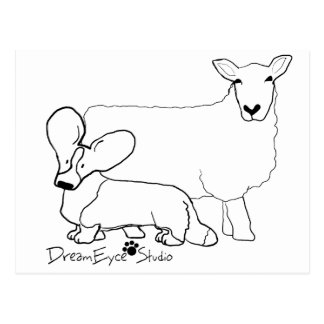 Cardi with a Sheep Standing Postcard