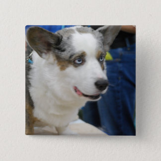 Cardigan Welsh Corgi Dog  Button